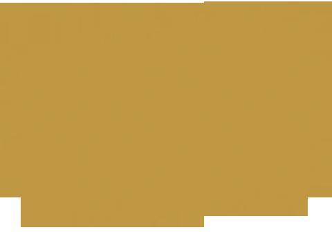 Wasserfleck